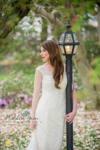 Decatur, Il Bridal Expo