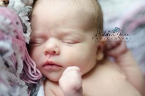 hire a newborn photographer