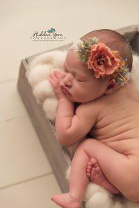 newborn photographer decatur il